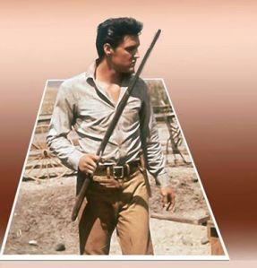 Elvis cowboy