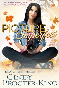 cindyprocter-king_pictureimperfect_800px